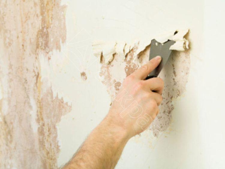 Удаление старой краски с деревянных дверей